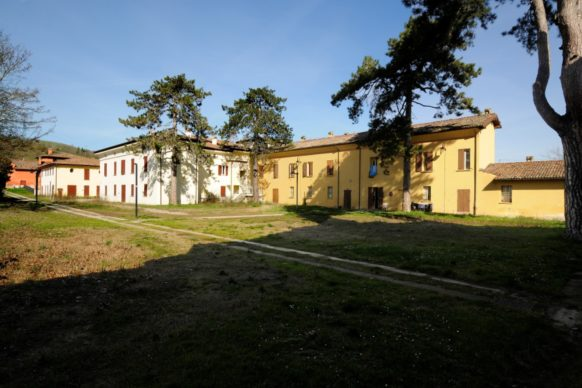 Sapaba_ghisilieri6